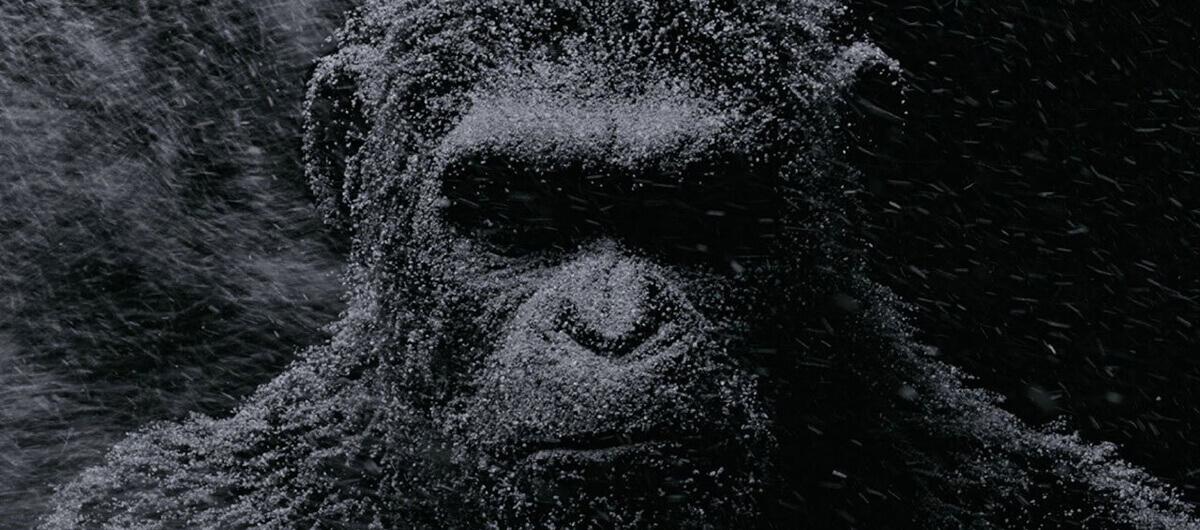 Δωρεάν προσκλήσεις για την ταινία 'Ο Πλανήτης των Πιθήκων: Σύγκρουση'